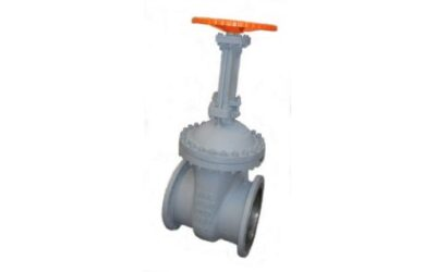 Cost effective carbon steel DIN-Gate Valves in various sizes